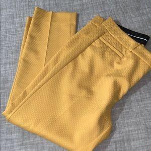 Yellow Sloan Fit pants